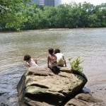 Great Green Escape: Theodore Roosevelt Island