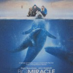 Big Miracle: Lots of Great Discussion Opportunities for Parents and Kids
